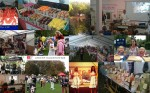 Barnes Food Fair 2013